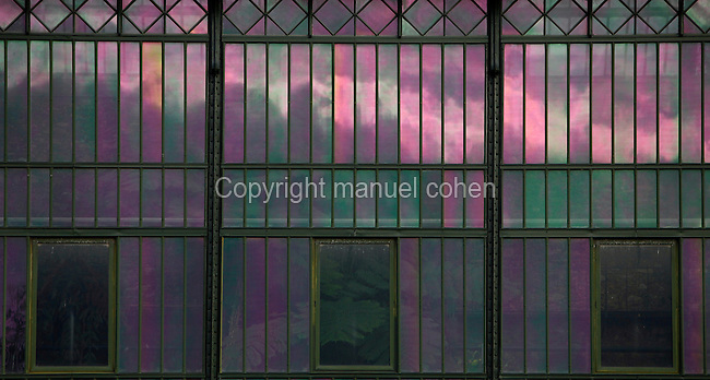 Plant History Glasshouse (formerly Australian Glasshouse), 1834, Charles Rohault de Fleury, Jardin des Plantes, Museum d'Histoire Naturelle, Paris, France. Detail of the metal and glass structure seen in a early morning light with the reflection of the cloudy sky. Through the three small windows luxuriant vegetation may be seen inside the glasshouse in the middle of this colourful mosaic.
