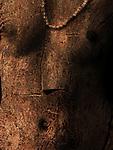 A slender female nude torso in woodgrain.