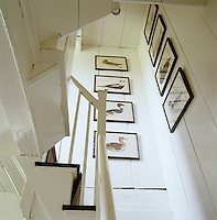 A set of 18th-century duck prints in black reproduction faux bamboo frames hangs on the walls of the narrow staircase