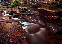 "Fall Creek Gorge, in rural Warren County, Indiana, is a popular place that local people have gone to for many years. Most people in the area refer to the place as ""The Pot Holes."" This small nature preserve is a great place for a walk in the woods during any season, but the rich colors can be their best in autumn."