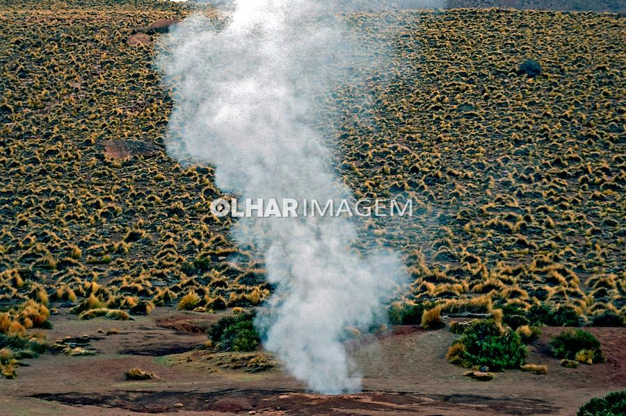 Geiser El Tatio no Deserto do Atacama. Chile. 2004. Foto de Maristela Colucci.