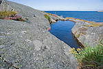 Bedrock along the Rugged Coast of the Baltic Sea on the Island of Kökar