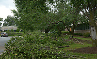 NWA Democrat-Gazette/BEN GOFF @NWABENGOFF<br /> Downed tree limbs lay next to a parking lot Friday, May 19, 2017, after overnight storms at Beau Terre Office Park in Bentonville.