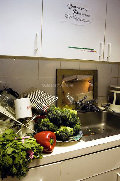 "Christian's kitchen, full of freshly foraged food in preparation for the evening's ""Freegan Feast,"" a dinner party held by the group about once a month in an effort to foster community amongst fellow dumpster divers."