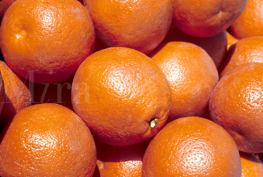 bright orange fresh tangerines