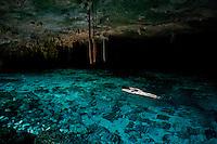 Cenotes Dos Ojos, Quintana Roo, Mexico