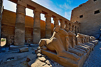 Row of ram-headed Sphinxes, Luxor Temple, located at modern day Luxor or ancient Thebes, Egypt