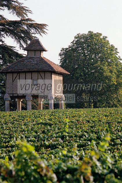 Europe/France/Midi-Pyrénées/46/Lot/Vignoble de Cahors: Vignes et pigeonnier chez C. Grezelle