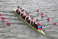 Crew: 8   Abingdon School Boat Club   Championship Eights<br /> <br /> Schools' Head of the River 2018<br /> <br /> To purchase this photo, or to see pricing information for Prints and Downloads, click the blue 'Add to Cart' button at the top-right of the page.