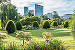 Morning in the Public Garden, Boston, Massachusetts, USA