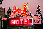 Bingo's motel sign