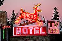 Bingo's motel sign