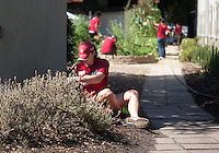 STANFORD, CA -- JULY 30, 2012: Stanford Athletic Department staff volunteered at several Bay Area locations Monday, July 30, as part of the university's Department of Athletics, Physical Education and Recreation (DAPER) Community Day.