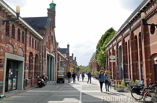 Nederland Amsterdam  -  De Westergasfabriek.   Foto Berlinda van Dam / Hollandse Hoogte