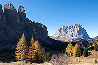 Italy, South Tyrol, Alto Adige, Dolomites, autumn landscape at Passo Gardena with Gruppo del Sella mountains and Sassolungo mountain | Italien, Suedtirol, Dolomiten, Herbstimmung am Groednerjoch mit Sellagruppe und Langkofel