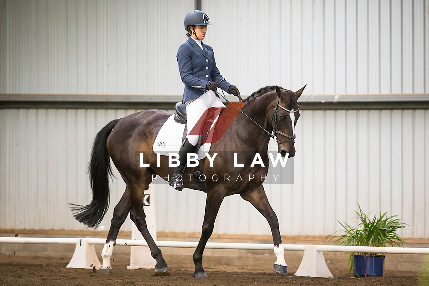 NZL-Shely Davys Olson (FINAL WISHFUL) 6TH- Hy Gain Feeds Young Rider Level 2 Musical Freestyle: 2015 NZL-SAMSUNG/GTL Networks NZ Pony and Young Rider Championships (Tuesday 13 January) CREDIT: Libby Law COPYRIGHT: LIBBY LAW PHOTOGRAPHY
