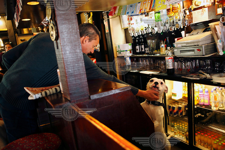 A regular caresses a dog in the Holly Bush pub, built in 1450. It is now the last remaining pub in the village of Elstree, west of London. The two other pubs in the village were turned into Chinese and Italian restaurants....
