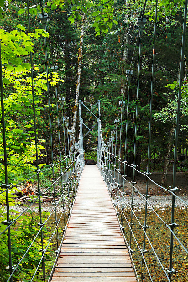 Suspension bridge over Ohanapecosh River, Grove of the Patriarchs Trail, Mount Rainier National Park, Washington, USA