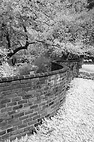Serpentine wall beside Poes Alley at the University of Virginia  in Charlottesville, Va. Photo/Andrew Shurtleff Photography, LLC