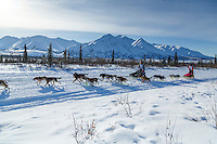 Andrew Nolan passes Jordan Seager as they run down the trail on the Denali Highway during the start day of the 2015 Junior Iditarod on Sunday March 1, 2015<br /> <br /> <br /> <br /> (C) Jeff Schultz/SchultzPhoto.com - ALL RIGHTS RESERVED<br />  DUPLICATION  PROHIBITED  WITHOUT  PERMISSION