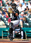 13 March 2010: Toronto Blue Jays' catcher Raul Chavez in action during a Spring Training game against the Atlanta Braves at Champion Stadium in the ESPN Wide World of Sports Complex in Orlando, Florida. The Blue Jays shut out the Braves 3-0 in Grapefruit League action. Mandatory Credit: Ed Wolfstein Photo