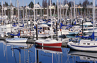 Boats in Squalicum Harbor, Bellingham, Washingto