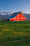 Wallowa County, OR   <br /> Ira Pace red barn  beneath the snowy peaks of the Wallowa mountains near Joseph