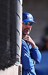 Wildcats Coach Frank Carey watches the action against College of Southern Idaho at Western Nevada College in Carson City, Nev., on Thursday, Feb. 26, 2015. <br /> Photo by Cathleen Allison/Nevada Photo Source