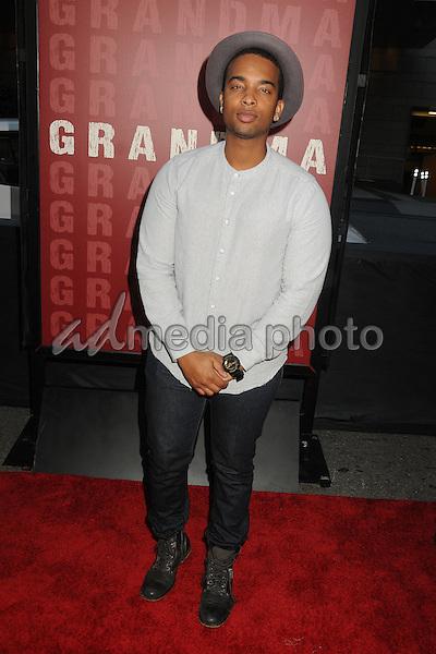"10 June 2015 - Los Angeles, California - Joel Harold. LA Film Festival 2015 Opening Night Premiere of ""Grandma"" held at Regal Cinemas LA Live. Photo Credit: Byron Purvis/AdMedia"