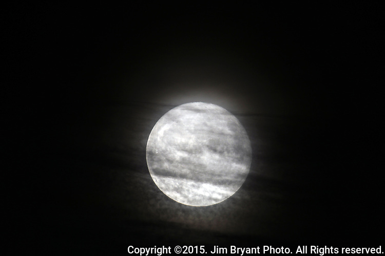 The Harvest  moon rises on October 27, 2015 in Washington State. Jim Bryant . All Rights Reserved