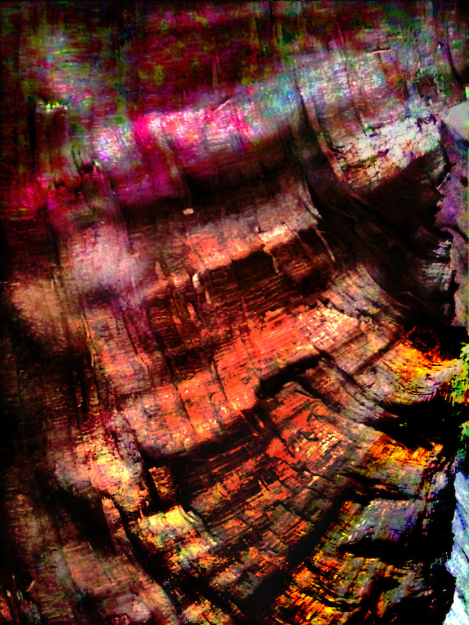 iPhone photograph of a crotch section of an ornamental fruit tree showing waving (curly) grain undulating where the limb broke off in a storm. False color on ends of the frame added to the natural wood hues in the center. copyright JimMendenhallPhoto.com 2014 iPhoneograph