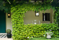 Virginia creeper and other climbing plants frame the structure of the property