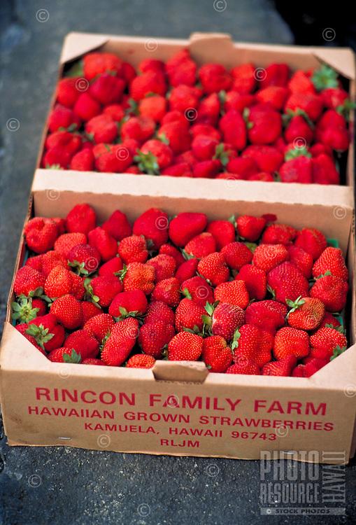 Fresh strawberries in a box
