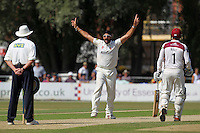 A big appeal by Monty Panesar of Essex for the wicket of Trent Copeland - Essex CCC vs Northamptonshire CCC - LV County Championship Division Two Cricket at Castle Park, Colchester Cricket Club - 21/08/13 - MANDATORY CREDIT: Gavin Ellis/TGSPHOTO - Self billing applies where appropriate - 0845 094 6026 - contact@tgsphoto.co.uk - NO UNPAID USE
