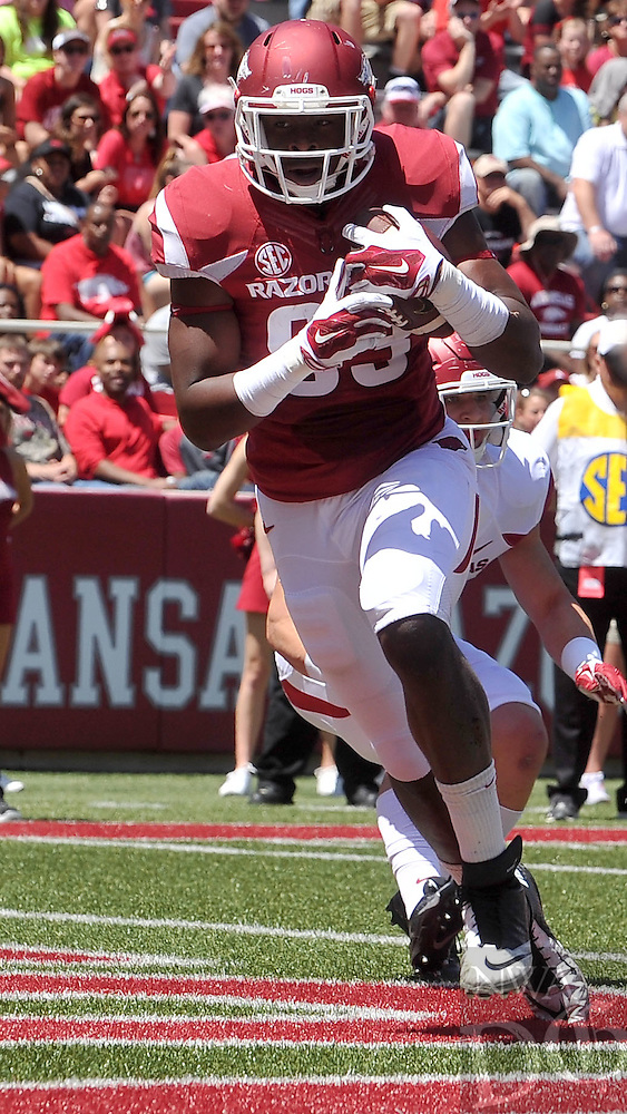 NWA Democrat-Gazette/Michael Woods --04/25/2015--w@NWAMICHAELW... University of Arkansas tight end Jeremy Sprinkle scores a touchdown during the 2015 Red-White game Saturday afternoon at Razorback Stadium in Fayetteville.