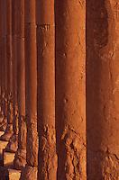 SIRIA - sito di Palmira(Tadmor)  colonne