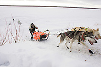 Hugh Neff on the frozen Yukon River approaching Ruby on Saturday morning during the 2008 Iditarod