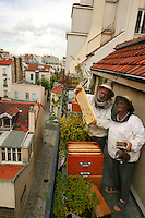 In Paris. The Malvezins observe <br /> a shallow frame <br /> on their Parisian balcony. <br /> Equipped with veiled hats <br /> and smoker in hand, <br /> these bee lovers <br /> pursue their passion <br /> and give the city <br /> a breath of country air.