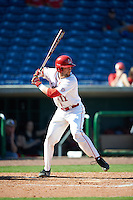 Ball State Cardinals Erek Bolton (11) at bat during a game against the Louisville Cardinals on February 19, 2017 at Spectrum Field in Clearwater, Florida.  Louisville defeated Ball State 10-4.  (Mike Janes/Four Seam Images)