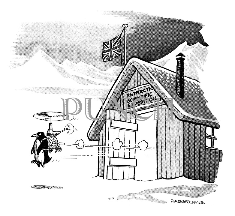 (Penguin flying with use of a propeller out of an Antarctic Scientific Expedition hut)