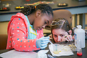 Jenna Farrar, 9, extracts DNA from fruit as Emily Bowie, 4th year development stem cell biology grad student, looks on during FEMMES' (Females Excelling More in Math, Engineering, and Science) Capstone event. The Saturday event was a free, annual one-day outreach program introducing young women from Durham (4th through 6th grade) to math, science and engineering. <br /> The goal of FEMMES (Females Excelling More in Math, Engineering and Science) is to give girls hands-on experience in fields where women are often greatly under-represented. By using female volunteers and faculty members, we hope to demonstrate that women can and do excel in these fields. Each faculty volunteer directs a hands-on activity that shows something interesting and fun about their area of expertise. Student volunteers lead groups to the activities and act as mentors for the day to our program&rsquo;s participants.
