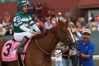 HOT SPRINGS, AR - April 14: Stellar Wind #3 with jockey Victor Espinoza aboard after winning the Apple Blossom Handicap at Oaklawn Park on April 14, 2017 in Hot Springs, AR. (Photo by Ciara Bowen/Eclipse Sportswire/Getty Images)