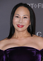 04 November  2017 - Los Angeles, California - Ava Chow. 2017 LACMA Art+Film Gala held at LACMA in Los Angeles. <br /> CAP/ADM/BT<br /> &copy;BT/ADM/Capital Pictures