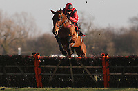 Nagpur ridden by Aidan Coleman in jumping action during the Sidney Banks Memorial Novices Hurdle