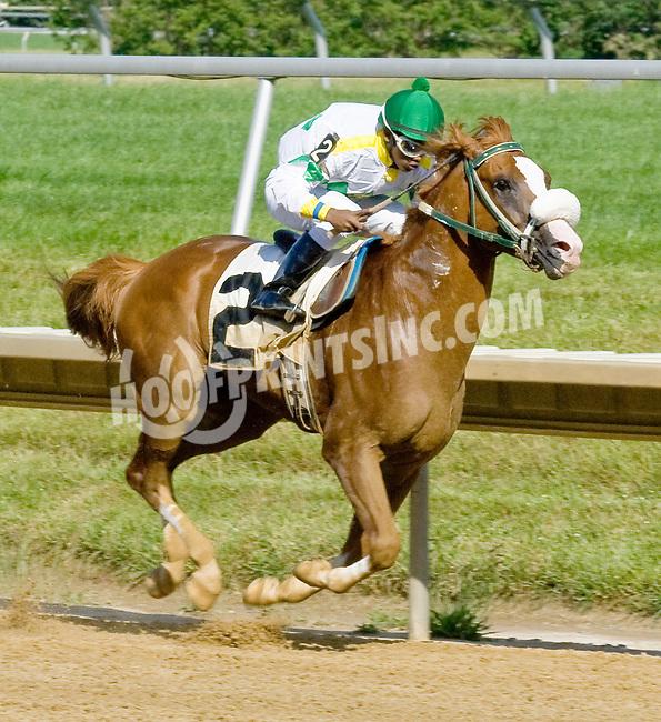 Spin Doctor winning at Delaware Park on 6/13/12