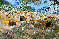 Pictures of Copper age Domus de Janas Sas Concas prhistoric chambered rock burial chambers cared into trachyte ,  Abealzu-Filigosa culture 3000 BC, Oniferi,  province of Nuoro, Sardinia.