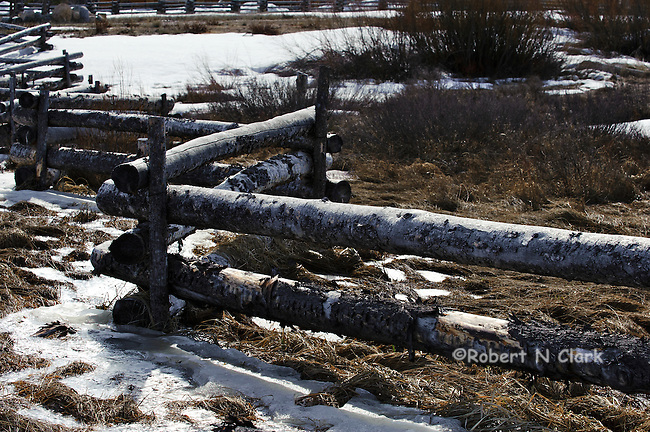 Log rail fence with snow