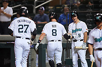 Salt River Rafters Seth Beer (8), of the Arizona Diamondbacks organization, is congratulated by Jerar Encarnacion (27) and Jake McCarthy (5) after hitting a home run during an Arizona Fall League game against the Mesa Solar Sox on September 27, 2019 at Salt River Fields at Talking Stick in Scottsdale, Arizona. Salt River defeated Mesa 6-1. (Zachary Lucy/Four Seam Images)