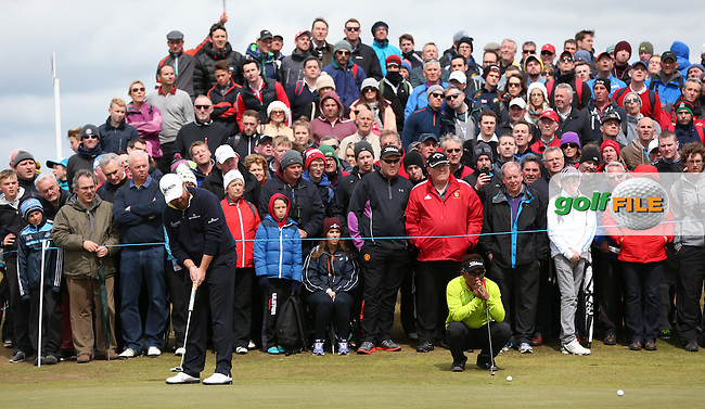 Shane Lowry (IRL) watched by many on the 7th green during Round Three of the 2015 Dubai Duty Free Irish Open Hosted by The Rory Foundation at Royal County Down Golf Club, Newcastle County Down, Northern Ireland. 30/05/2015. Picture David Lloyd | www.golffile.ie