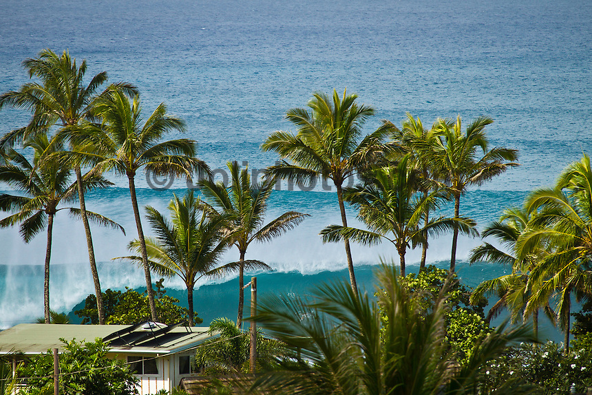 Haleiwa Hawaii,(Sunday November 14, 2010) .Photo: joliphotos.com